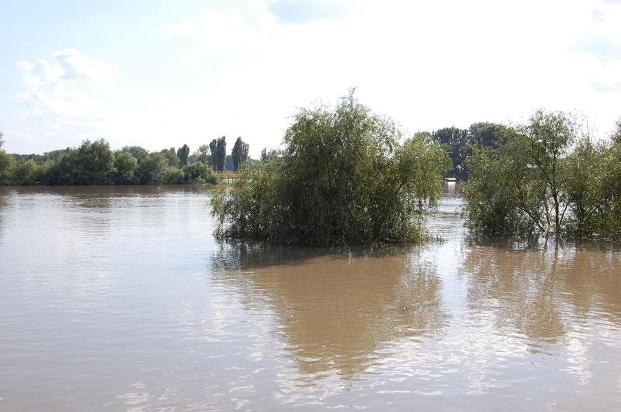 Наводнение в Тирасполе в июле-августе 2008 года (7)