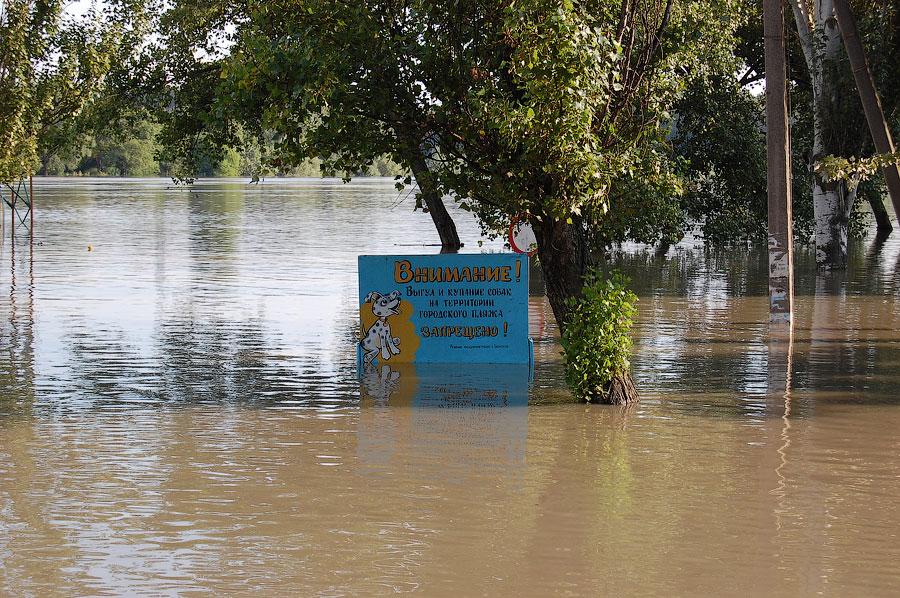 Наводнение в Тирасполе в июле-августе 2008 года (24)