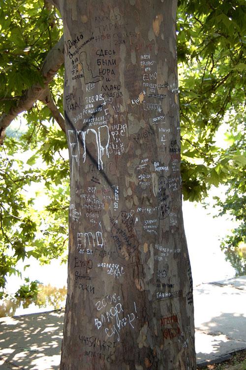 Эмо-дерево