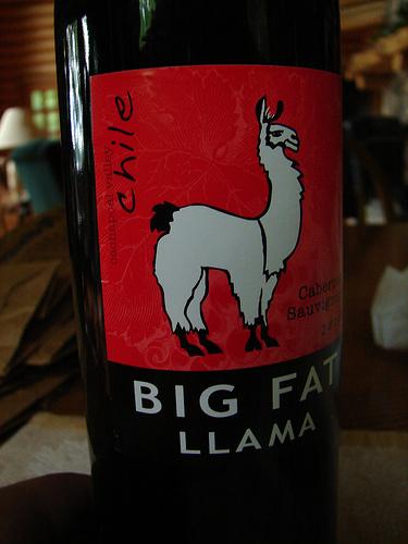 Big Fat Llama