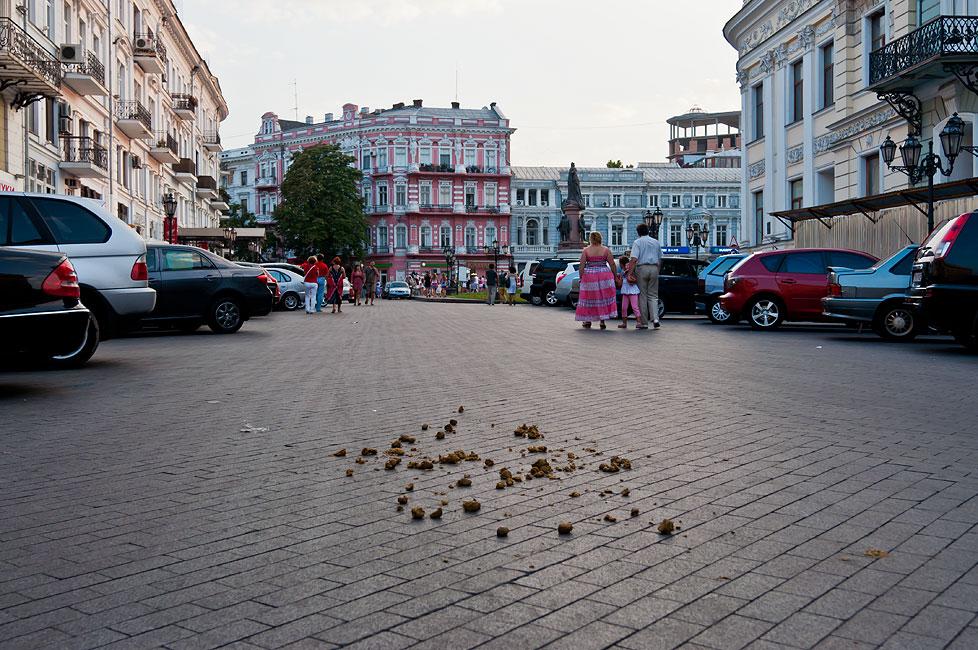 Одесса - август 2013 года (12)