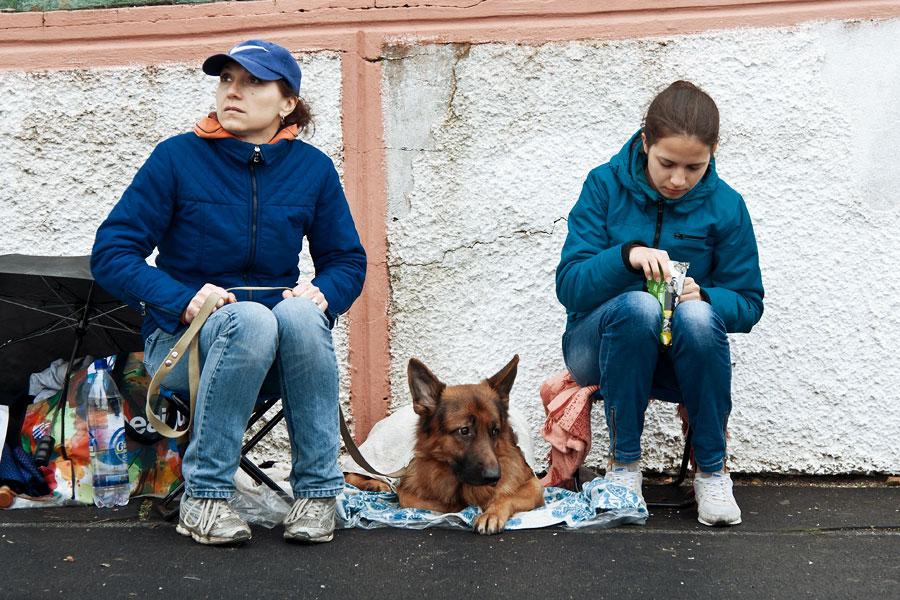 выставка собак в Тирасполе - 15 сентября 2013 года (1)