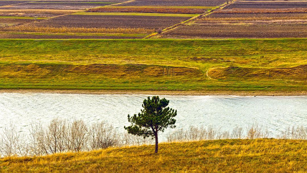 Село Бычок, река Днестр (8)