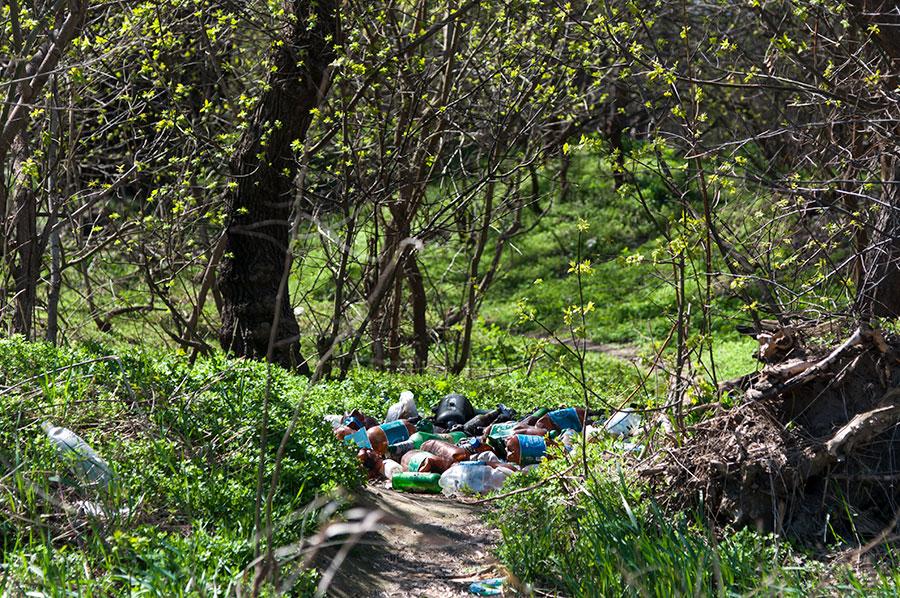 Мусор на берегу Днестра в окрестностях Тирасполя (15)