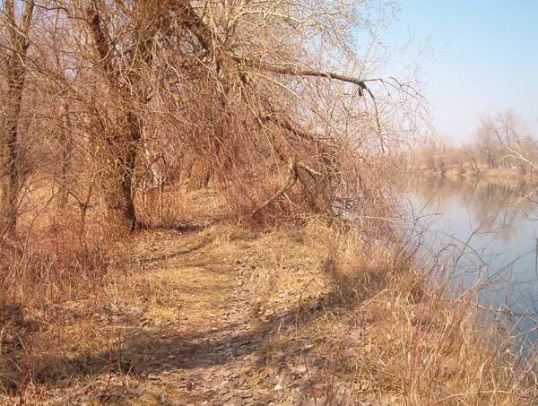 Тропинка вдоль берега Днестра