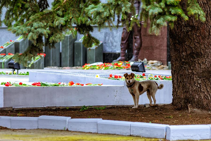 12 апреля – день освобождения Тирасполя, Мемориал Славы