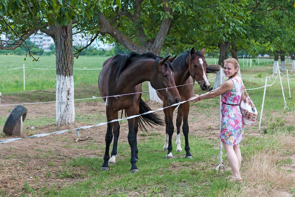 Катерина и лошадки
