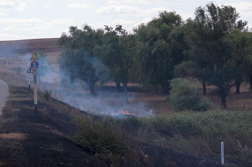 Пожар на поле в Слободзее