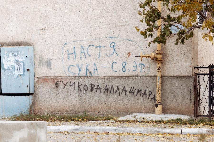 _DSC5884